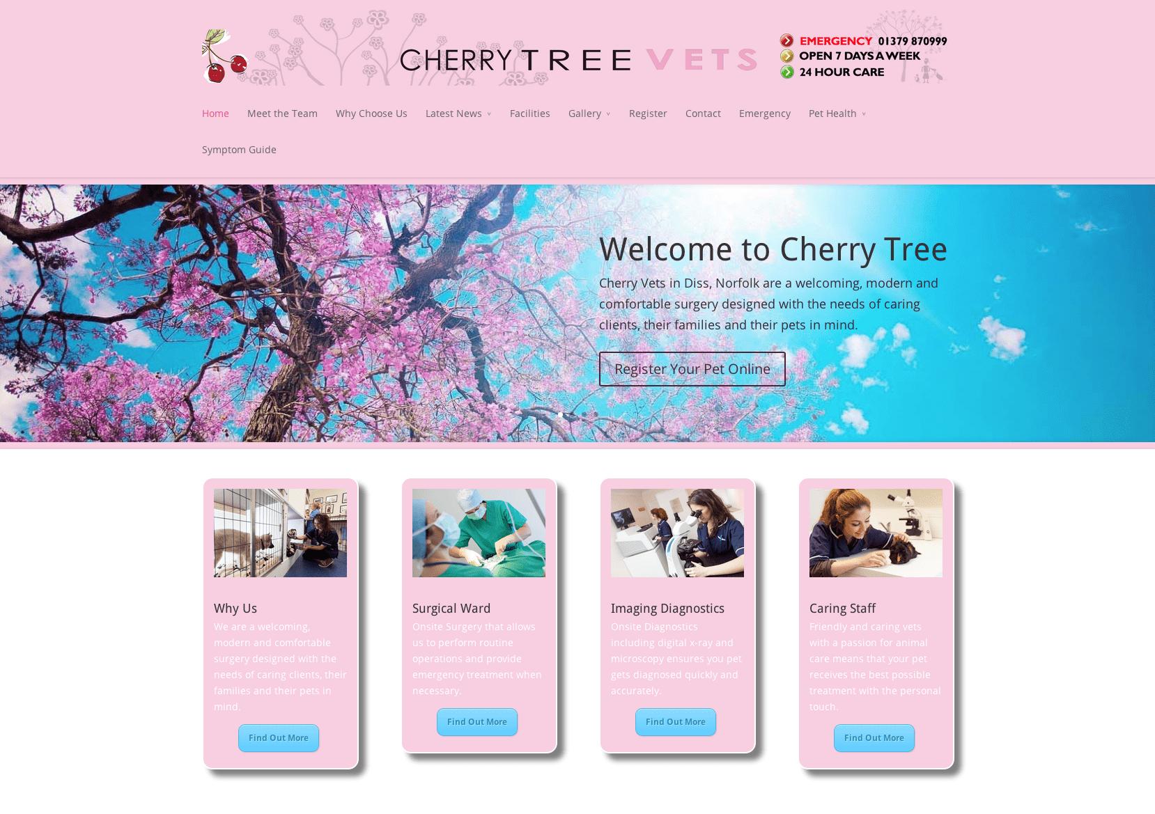 cherryweb - Initial Ideas