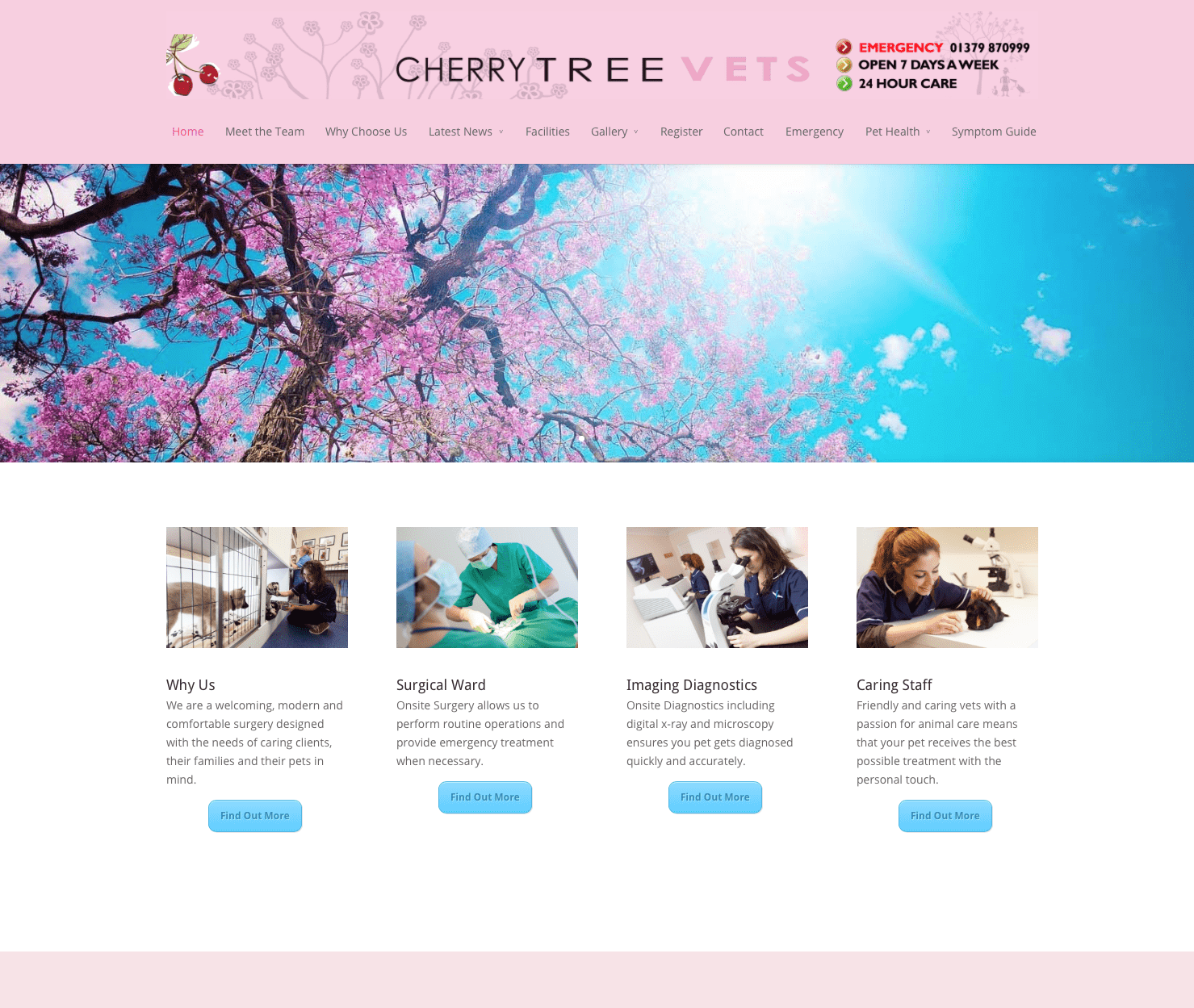 Vet websites and Photography