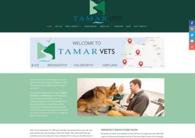 Tamar-1024x814